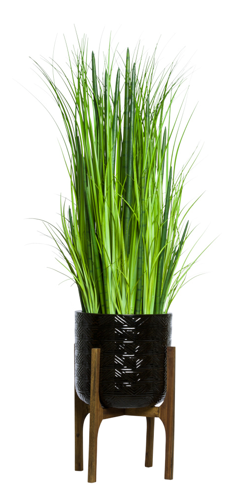 SNAKE PLANT/GRASS IN BLACK TEXTURED PLANT STAND