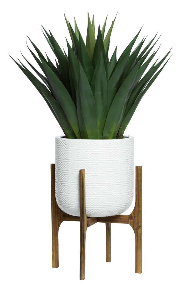 AGAVE IN WHITE TEXTURED PLANT STAND
