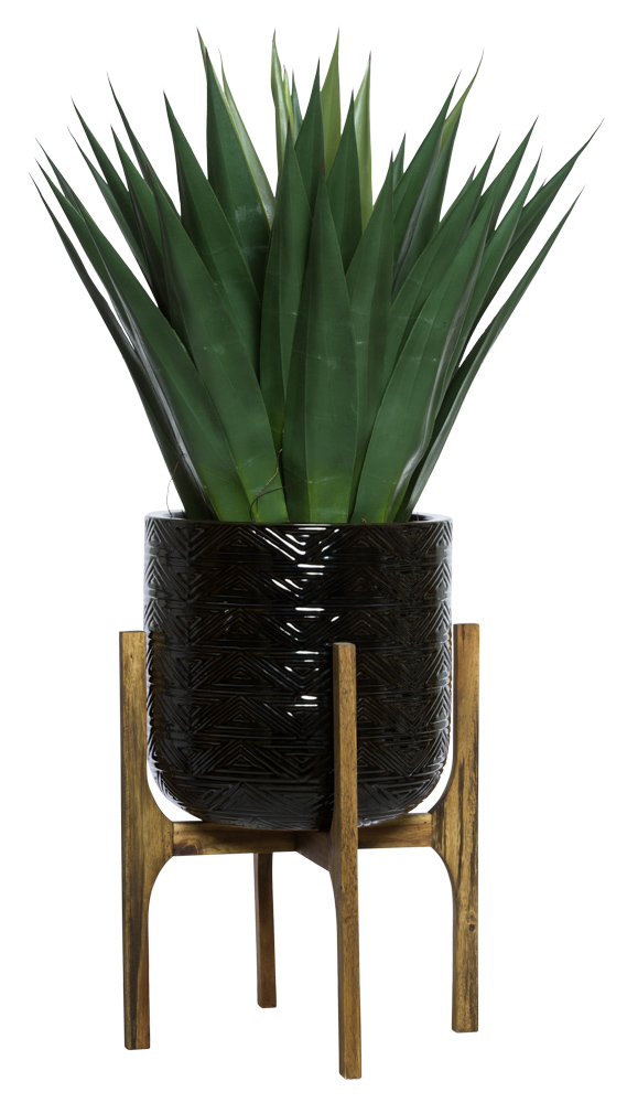 AGAVE IN BLACK TEXTURED PLANT STAND