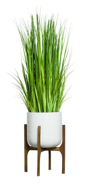 SNAKE PLANT/GRASS IN WHITE TEXTURED PLANT STAND