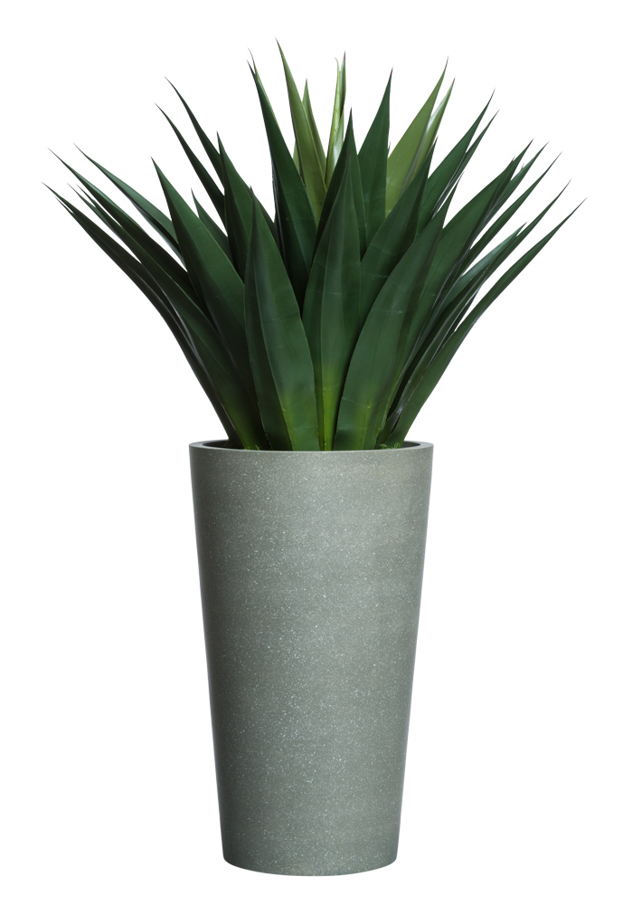 LARGE AGAVE IN TALL GREYSTONE POT