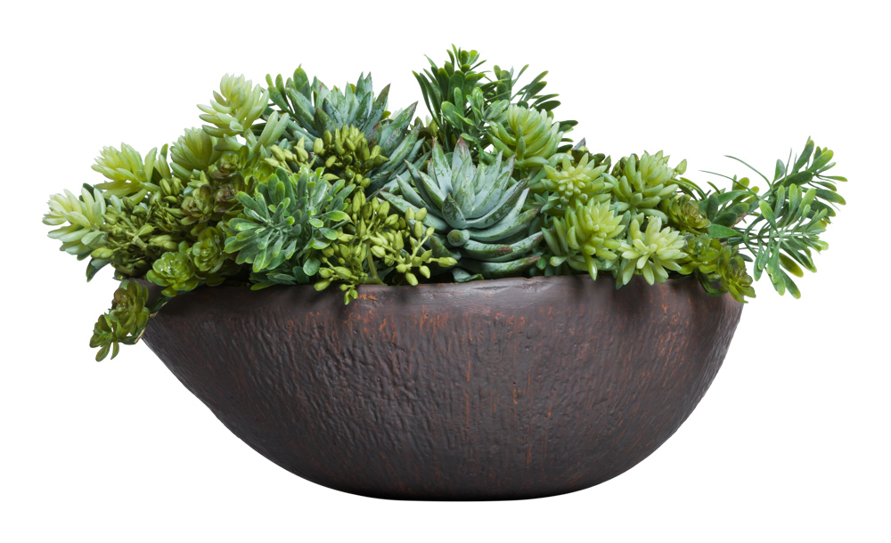 MIXED SUCCULENT IN BROWN OVAL