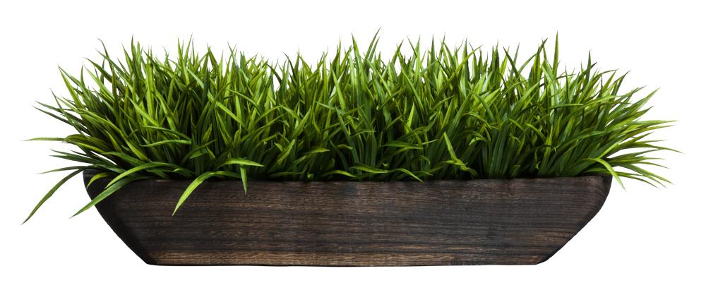 SWORD GRASS IN WOOD BOAT