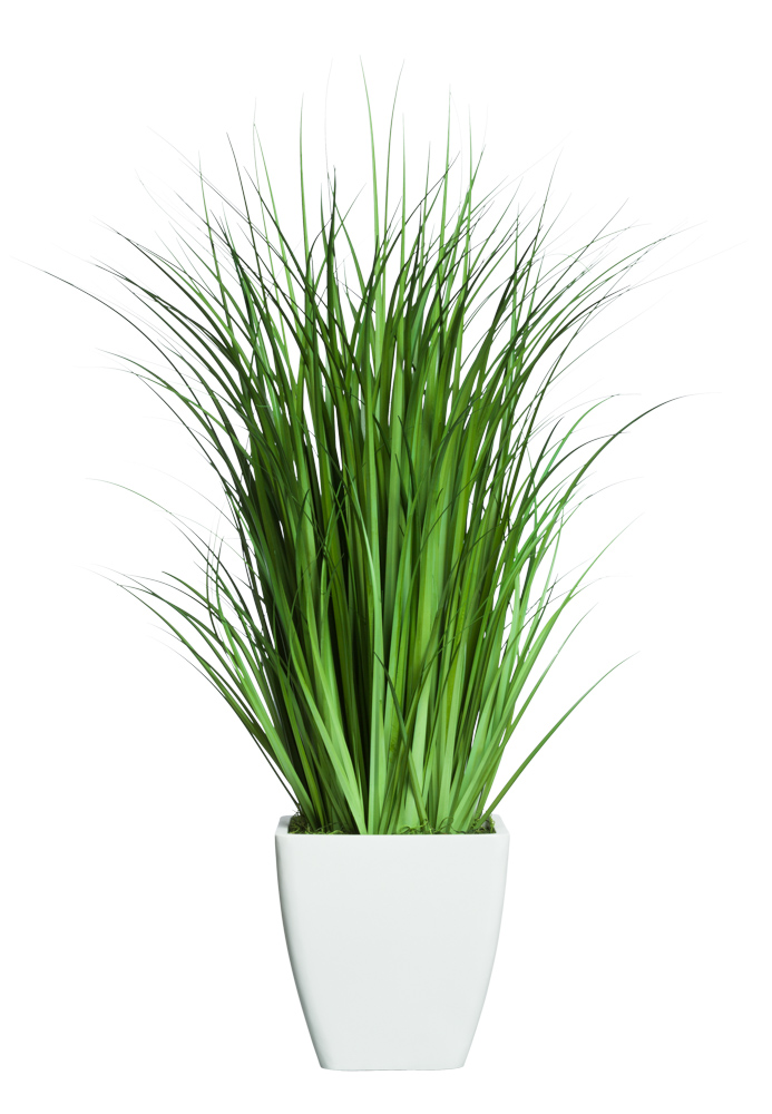 GRASS IN WHITE SANDSTONE SQUARE POT ( THIS ITEM WILL BE AVAILABLE IN MID-NOVEMBER 2021 )