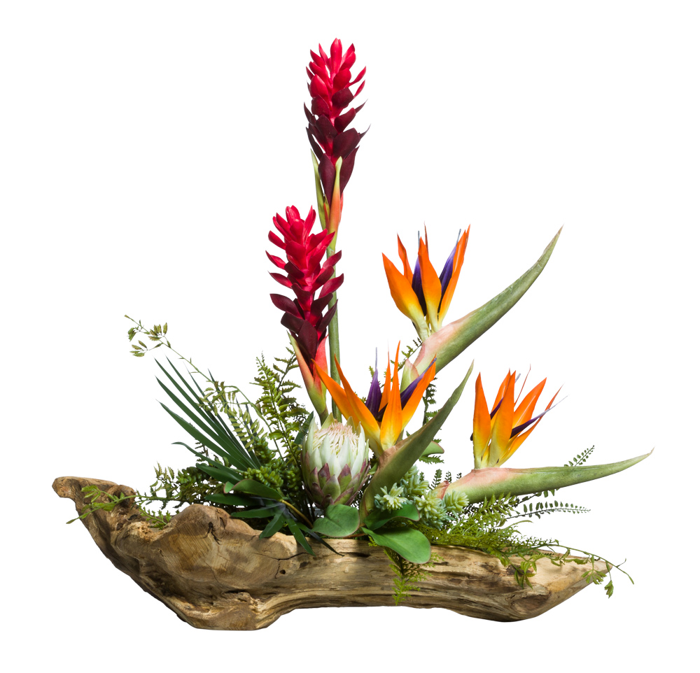 TROPICAL FLOWERS ON WOOD BRANCH